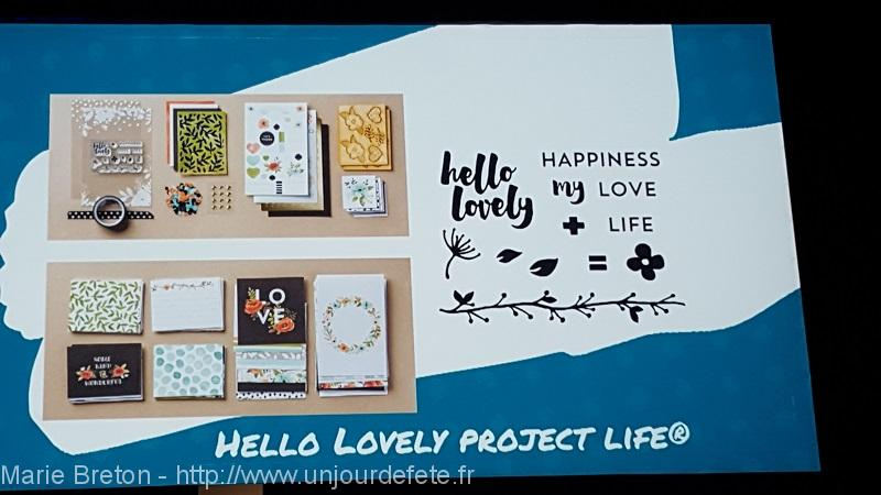 #hellolovely #projectlife