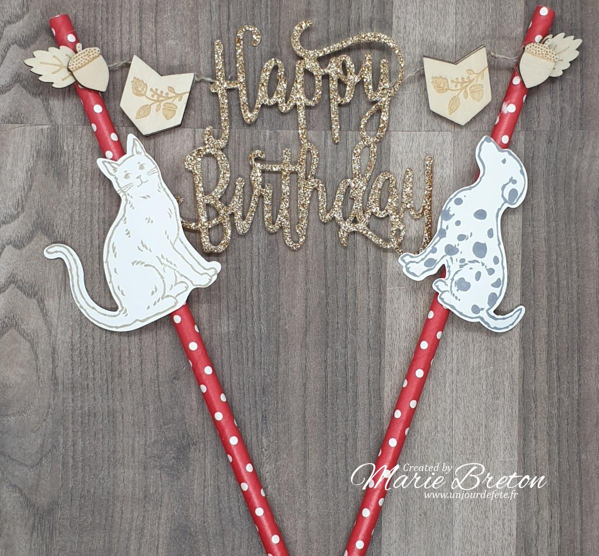 décoration gâteau anniversaire chien et chat.jpg