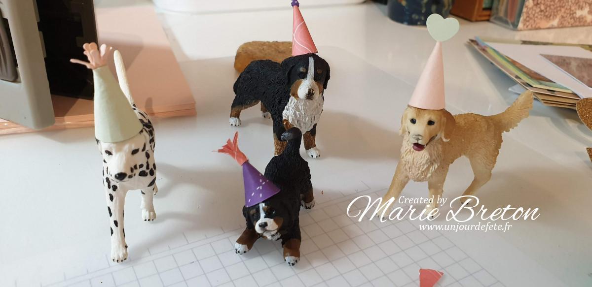 anniversaire chiens.jpg